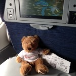 Hope Bear is almost home!