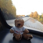"""Rolling along in the dome car on """"The Canadian"""" through Northern Ontario."""