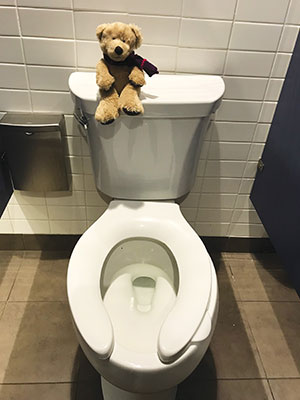 Photo of a Hope Bear sitting on a toilet